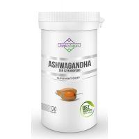 ASHWAGANDHA EKSTRAKT 120 KAPSUŁEK (500 mg) - SOUL FARM